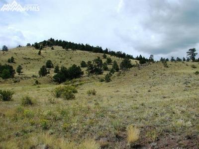 Guffey Residential Lots & Land For Sale: Antelope Lane