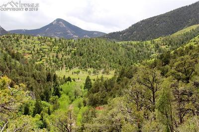 Residential Lots & Land For Sale: Trestle Trail