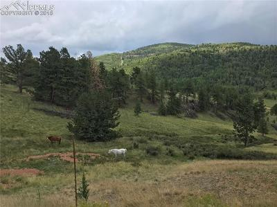 Cripple Creek Residential Lots & Land For Sale: 902 Copper Mountain Drive
