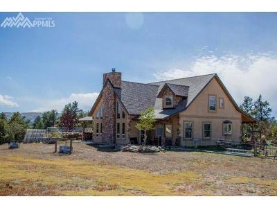 Florissant Farm For Sale: 2100 County 11 Road