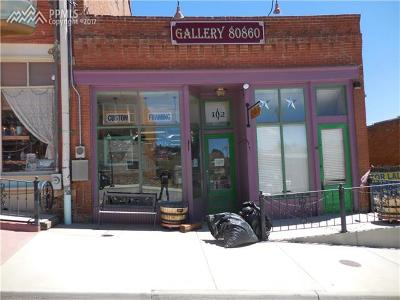 Commercial For Sale: 102 Fourth Street