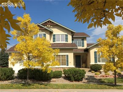 Colorado Springs Single Family Home For Sale: 2512 Willow Glen Drive