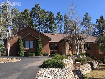 Colorado Springs Single Family Home For Sale: 18145 Bakers Farm Road