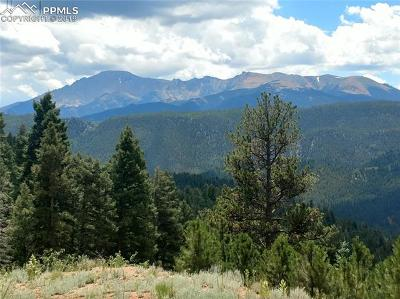 Woodland Park Residential Lots & Land For Sale: 8743 High Mark Point