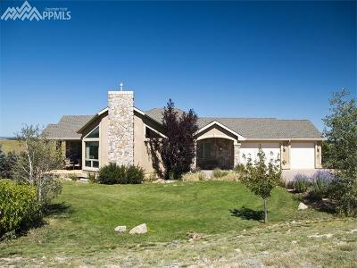 Single Family Home For Sale: 5320 Roundup Ridge Road