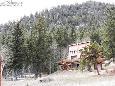Cripple Creek Single Family Home For Sale: 98 Andes Road