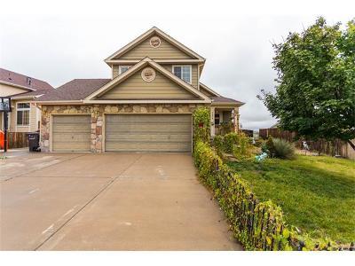 Fountain Single Family Home For Sale: 7574 Sistine Lane