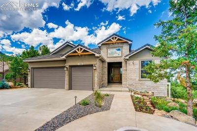 Colorado Springs Single Family Home For Sale: 5384 Old Star Ranch View