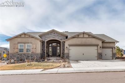 Colorado Springs Single Family Home For Sale: 12606 Chianti Court