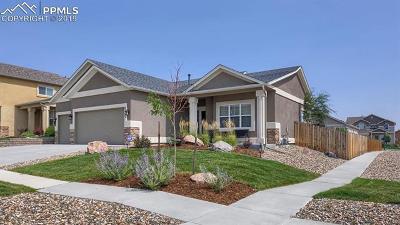 El Paso County Single Family Home For Sale: 8405 Vanderwood Road