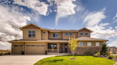 Colorado Springs Single Family Home For Sale: 12541 Chianti Court