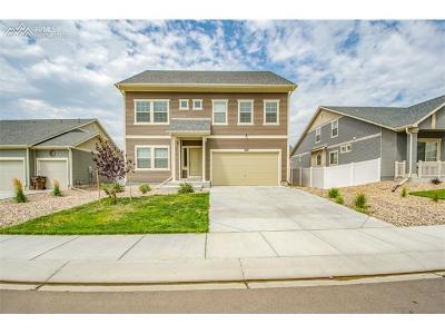 El Paso County Single Family Home For Sale: 7924 Moondance Trail