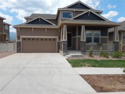 Single Family Home For Sale: 1370 Alveston Street