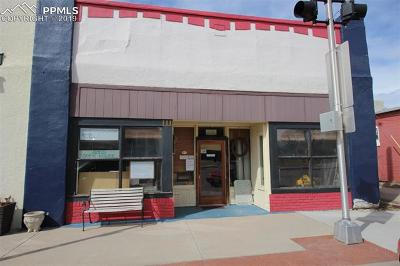 Commercial For Sale: 111 S Main Street