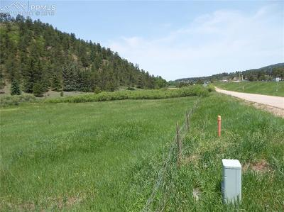 Woodland Park Residential Lots & Land For Sale: 404 County 21 Road
