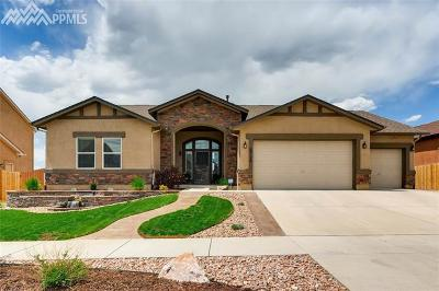 Colorado Springs Single Family Home For Sale: 6728 Silver Star Lane