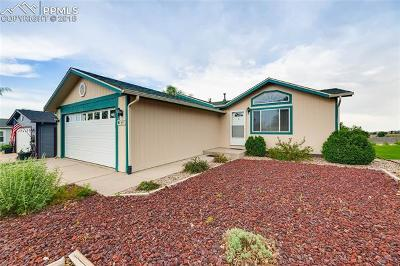 El Paso County Single Family Home For Sale: 7697 Grosbeak Point