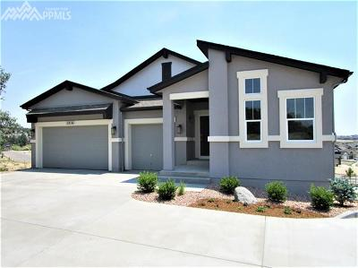 El Paso County Single Family Home For Sale: 1216 Count Fleet Court