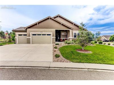 Colorado Springs Single Family Home For Sale: 2388 Rusty Ridge Court