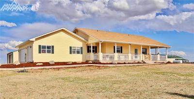 Peyton, Falcon Single Family Home For Sale: 4015 E Blaney Road