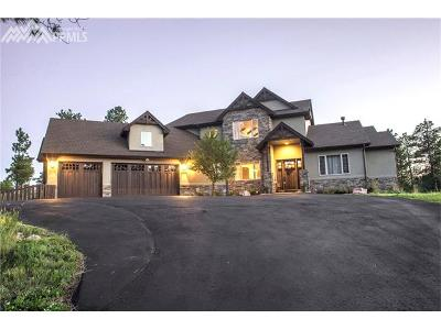 Colorado Springs Single Family Home For Sale: 4335 Foxchase Way