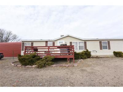 Pueblo Single Family Home For Sale: 125 S Neilson Avenue