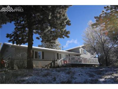 Single Family Home For Sale: 11275 Fagan Road