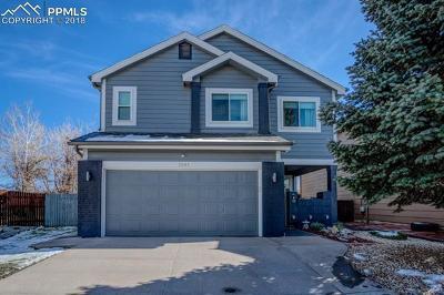 Colorado Springs Single Family Home For Sale: 5045 Fabray Lane