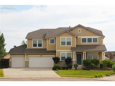 Colorado Springs Single Family Home For Sale: 5921 Huerfano Drive
