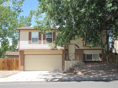 Colorado Springs Single Family Home For Sale: 3550 Brisbane Drive