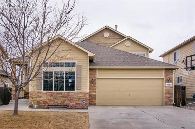Single Family Home For Sale: 6244 Saddlebred Way
