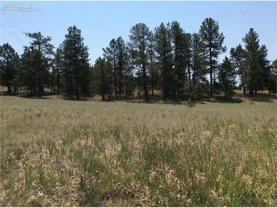Residential Lots & Land For Sale: 484 Due South Road