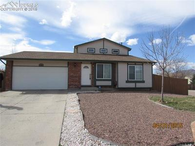 Colorado Springs Residential Income For Sale: 5061 N Nolte Drive