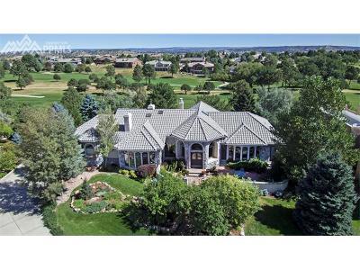 Colorado Springs Single Family Home For Sale: 3705 Camel Grove