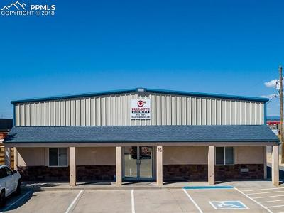 Commercial For Sale: 85 N Silicon Drive