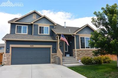 Colorado Springs Single Family Home For Sale: 4620 Katahdin Way