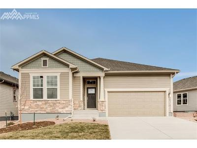 Colorado Springs Single Family Home For Sale: 6370 Rowdy Drive