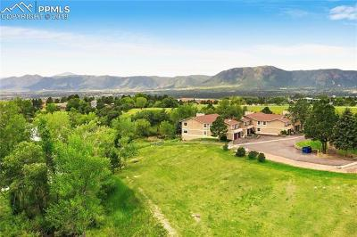 Monument Condo/Townhouse For Sale: 1665 Deer Creek Road