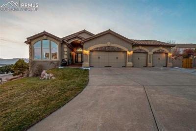 Colorado Springs Single Family Home For Sale: 4240 Saddle Rock Road