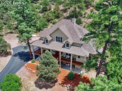 Colorado Springs Single Family Home For Sale: 114 N Kathy Lane