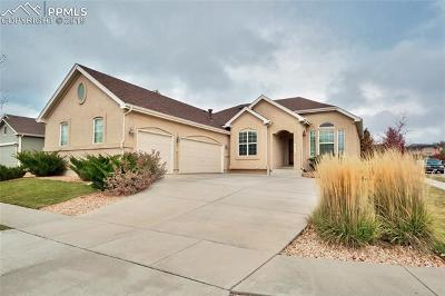 Single Family Home For Sale: 8413 Roaring Fork Drive