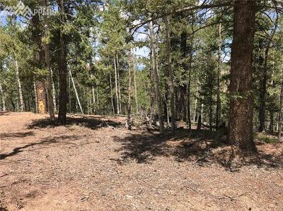 Cripple Creek Residential Lots & Land For Sale: 985 Princess Road