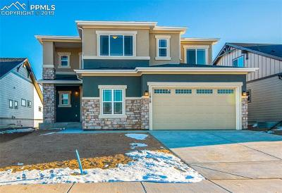 Colorado Springs Single Family Home For Sale: 1018 Barbaro Terrace