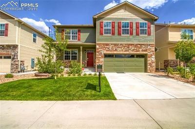 Castle Rock Single Family Home For Sale: 2208 Shadow Creek Road
