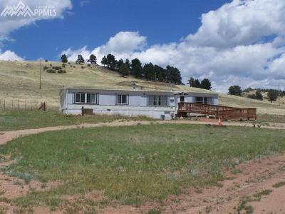 Cripple Creek Single Family Home For Sale: 1620 Teller 1 Road