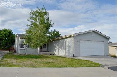 Colorado Springs Single Family Home For Sale: 7671 Whiptail Point