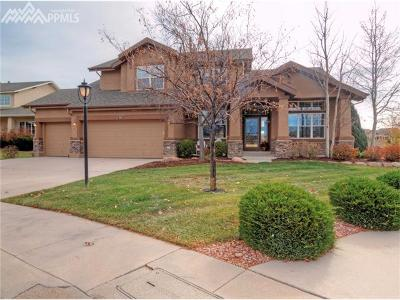 Colorado Springs Single Family Home For Sale: 2671 Willow Grass Court