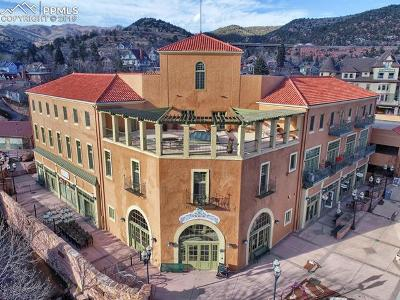 Manitou Springs Condo/Townhouse For Sale: 934 Manitou Avenue #205
