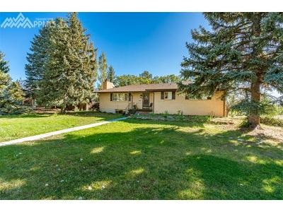 Colorado Springs Single Family Home For Sale: 523 Orion Drive