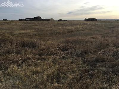 Residential Lots & Land For Sale: 10725 McKissick Road